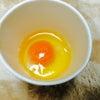卵パーティ(=^ェ^=)の画像