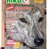 niku-Q 35号 現在、印刷中!の画像