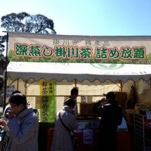 本日の龍尾神社