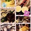 牡蠣☆の画像