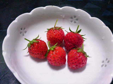 石垣イチゴの試み (6)