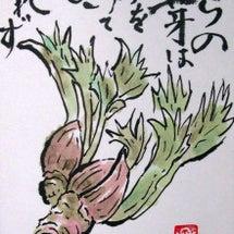 トゲトゲのタラの芽に…