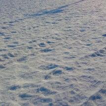 豪雪に埋もれる