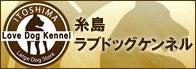 糸島ラブドッグケンネル
