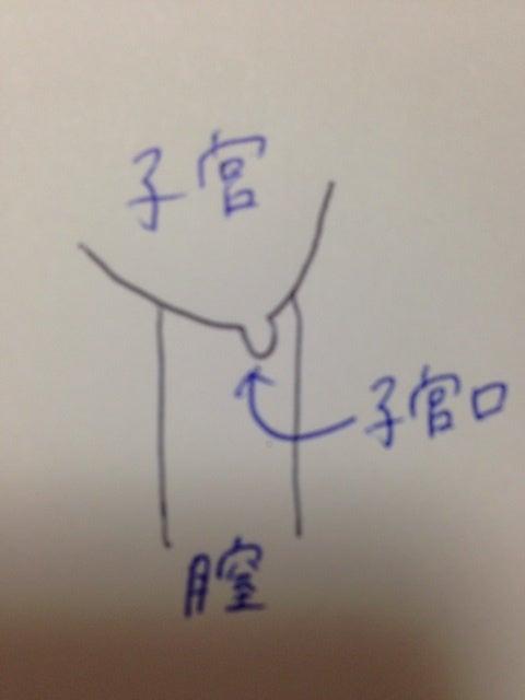 口 福 子宮 さん 妊娠 式