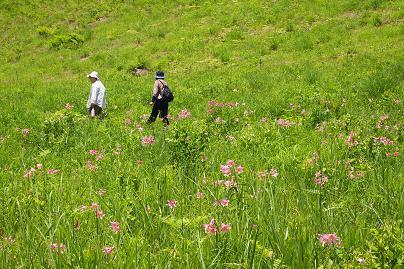 野の花会2