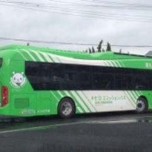 電気バス!!!