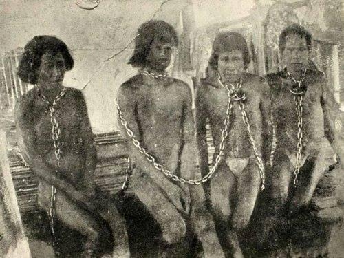 アマゾンにも奴隷を作った白人た...