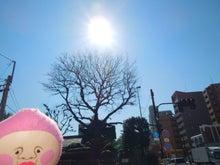 12志村一里塚3