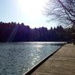 大浦池でピクニック