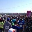 フルマラソン、走りま…