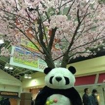 上野駅には…