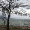琵琶湖なうの画像
