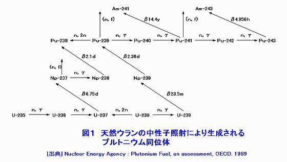 天然Uの中性子照射により生成されるPu同位体