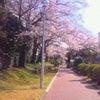 女性専用リラクゼーション 【4月】の画像