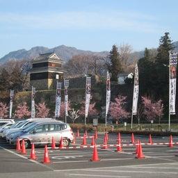 画像 今年も上田城千本桜の時期になりましたね! の記事より 6つ目