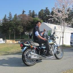 画像 今年も上田城千本桜の時期になりましたね! の記事より 5つ目