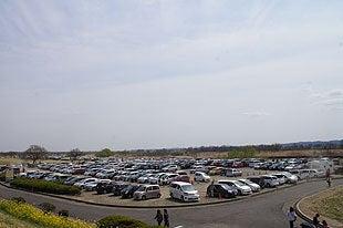 満車となった無料駐車場
