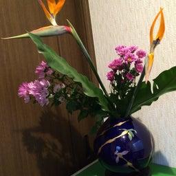 画像 この花なんでしょうか? の記事より