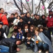 2014、ヒカリ桜バ…