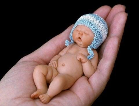 ヶ月 赤ちゃん 5 妊娠