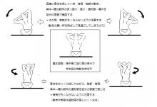 阪神西宮_みやざき鍼灸_胸郭チェック