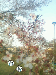 2014-04-11-17-54-56_deco.jpg