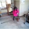 沼田市 渋川市 犬のしつけ 前橋ルテアの画像
