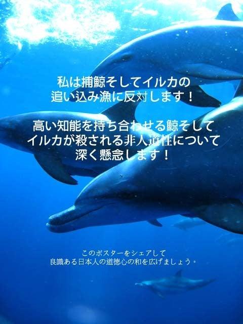 イルカの追い込み漁・捕鯨反対