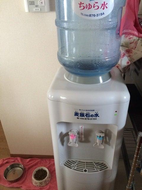 麦飯 石 の 水