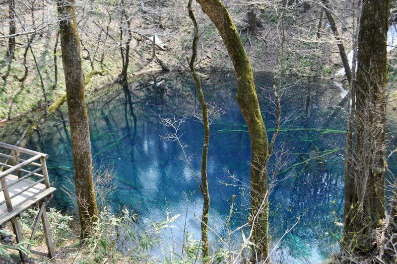 2014年4月下旬の白神山地十二湖13