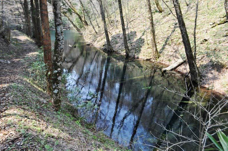 2014年4月下旬の白神山地十二湖1