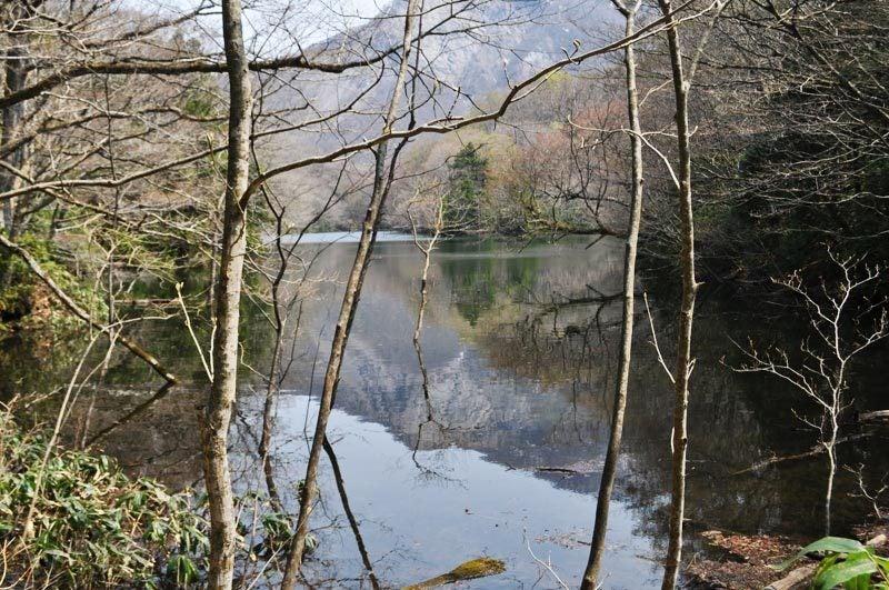2014年4月下旬の白神山地十二湖7