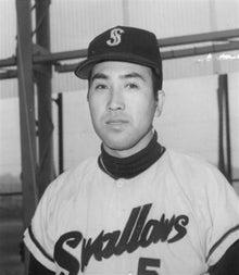 1955年の野球