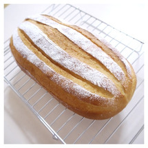 またまた色んなパン