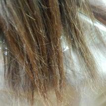 やっぱり癖毛と髪の傷…