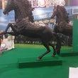 競馬のお馬さん