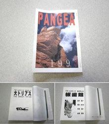 パンゲア1