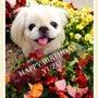6歳お誕生日♡