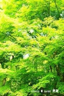 京都 詩仙堂
