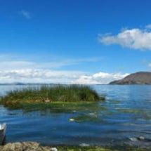 ボリビア チチカカ湖