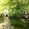 蓮華寺 京都市左京区の画像