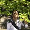 明日からは京都やで!の画像