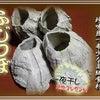 【高級珍味】青森県陸奥湾産「ふじつぼ」の画像