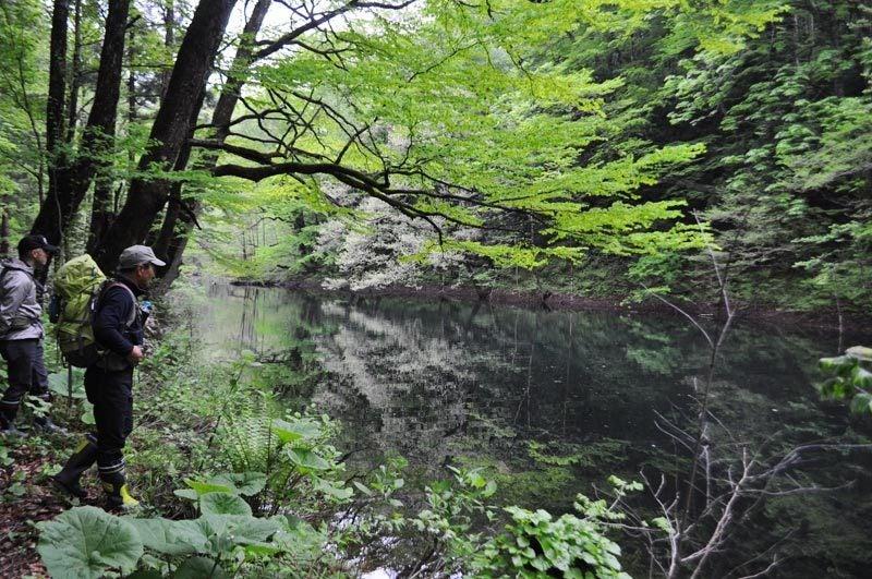 5月中旬の十二湖18