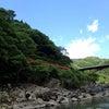 嵯峨嵐山散策♪の画像