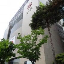 韓国釜山2014年5…