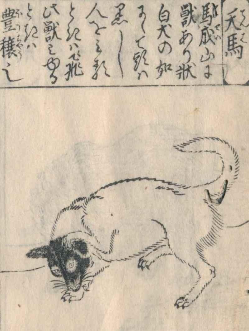 日本の洋犬史・その1 唐犬と南蛮...