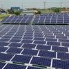 ソーラーワールド社製150kw太陽光が完工しました。(三木市周辺太陽光)の画像