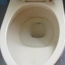 トイレの具体的な汚れ…